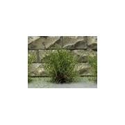 Jeu de 14 arbustes vert moyen 15 mm