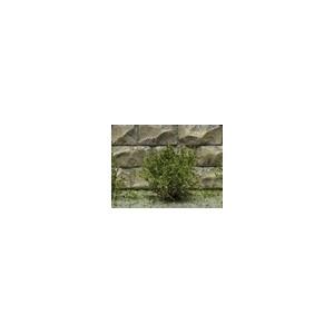 Jeu de 14 arbustes vert mélangé 15 mm