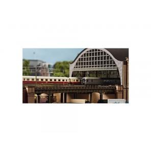 Four tracks bridge for big station
