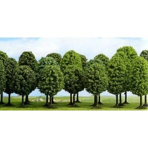 Lot de 12 arbres feuillus
